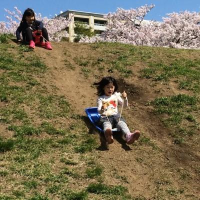 古都鎌倉散策とたまがわお花見!
