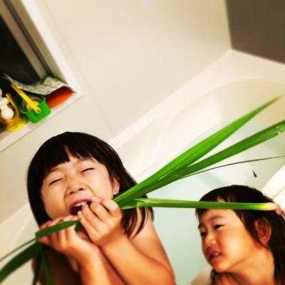 生活の中でも楽しむ植物の香り〜菖蒲湯〜