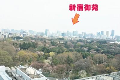 【新宿駅付近のランチにお困りのママ】伊藤流リーズナブルランチ攻略法