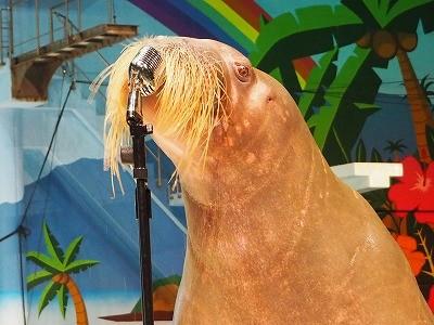 八景島シーパラダイス TVでよく放送される「うみファーム」の体験感想