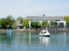 吹田市 万博記念公園 夢の池サイクルボート