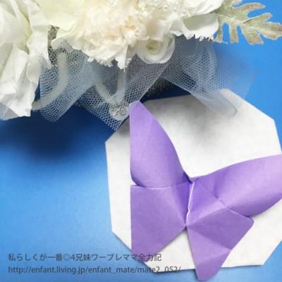 【簡単キッズ折り紙-蝶-】6歳児の折り方動画あり♪蝶の正しい数え方