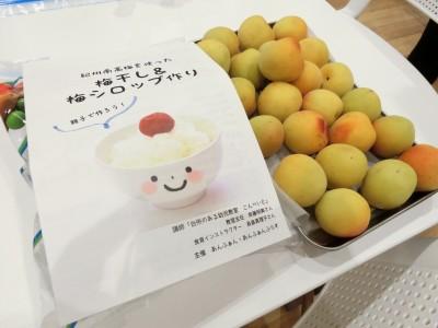 【読者イベントリポート】梅干し&梅シロップ作り教室