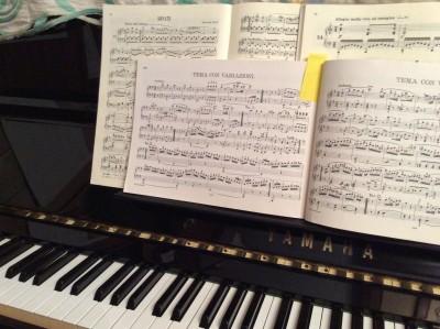 ピアノのおけいこ、復活しました