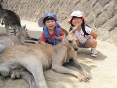 北九州市 ひびき動物ワールド