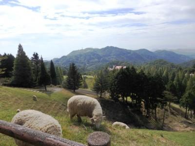 六甲山牧場で動物とふれあい&シープドッグショー☆服装、持ち物、注意点等