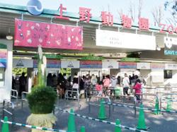台東区  上野動物園のお正月
