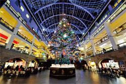 札幌市 サッポロファクトリー「ジャンボクリスマスツリー」