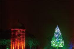 根室市「 ハッピークリスマス ~ねむろの森から夢の光」