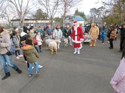 宮城県 八木山動物公園のクリスマス