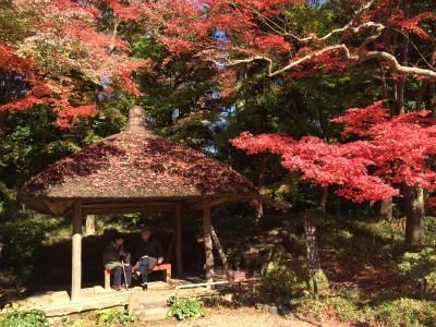 とろとろオムライスに無料の展望台、紅葉も!後楽園付近をぶらりしてみた