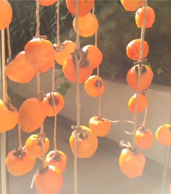 ベランダで干し柿を仕込みました(^^)/ お家にあるアレが大活躍!