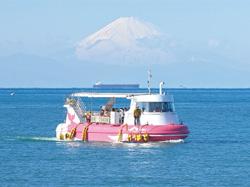 館山市  館山海中観光船