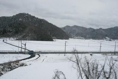 snow_5582