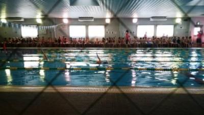 水泳の記録会に初参加♪&子どもが習い事をやめたがった時はどうする?