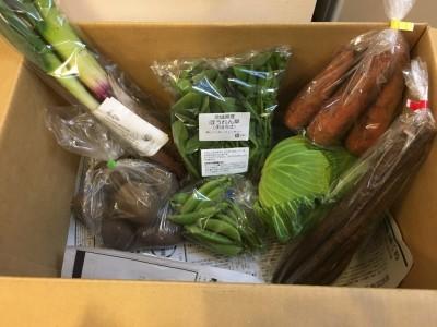 あんふぁん春フェスがきっかけで、野菜の宅配を始めました!