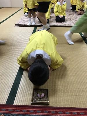 女躰神社幼稚園 茶道 お茶会