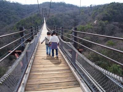 国内最大級の吊り橋へ
