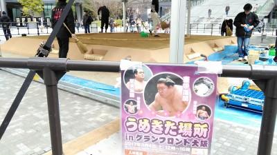 ちびっこ相撲に参加しました