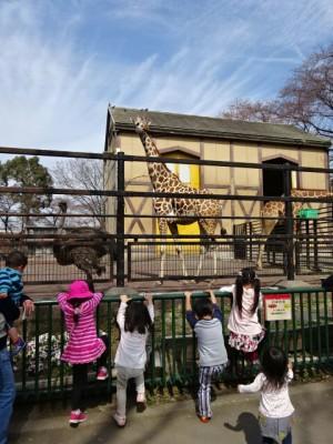 【羽村市動物公園】小さな子供連れさんにオススメ