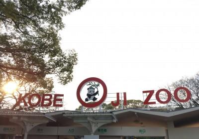 遊園地としての、神戸王子動物園。