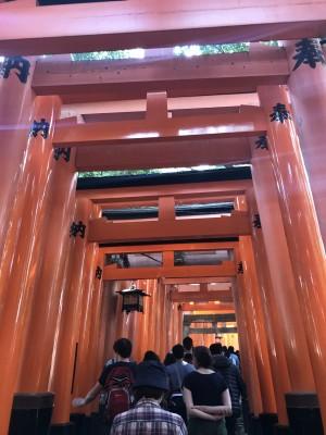 ママだって一人旅したい!日帰り&一人で桜の京都旅行の巻(前編)