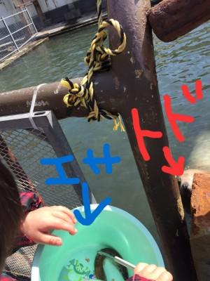 水族館もでっかいどう☆その3
