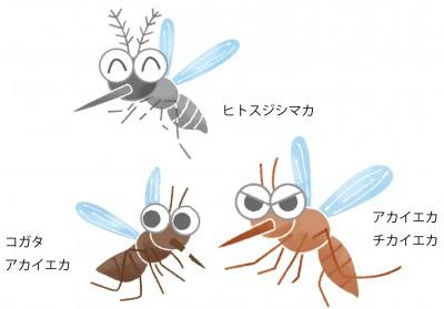 子どもの肌を守るため賢く対策!蚊に負けない夏にする!