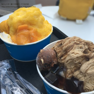 【話題のスイーツ】世界で大人気★台湾発新食感かき氷を子連れで実食@新宿