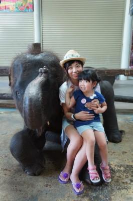 3世代プーケット旅行♪念願の水上マーケット…そして象!!