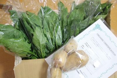 【バーチャル×リアル】家に居ながら農業体験!育てた野菜が届いた☆