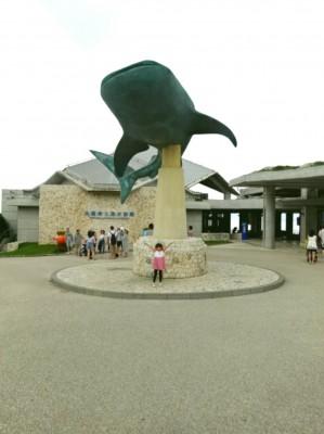 【夏休み準備】沖縄 美ら海水族館