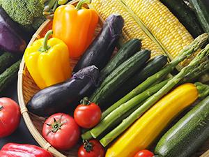 ママとして知っておきたい夏野菜の選び方検定