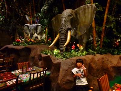 【レインフォレストカフェ】雨でも楽しめる!子ども大喜びの体験レストラン