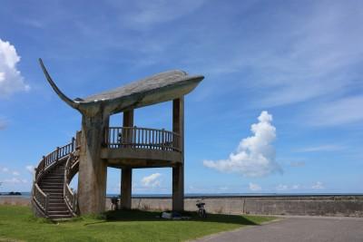 ちゅらさんの島「小浜島」でやりたい5つのこと