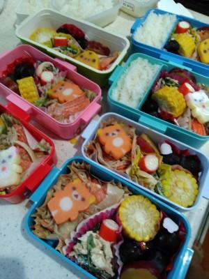 公立小学校で給食なし!毎日の子どものお弁当の中身と量と秘策と注意点