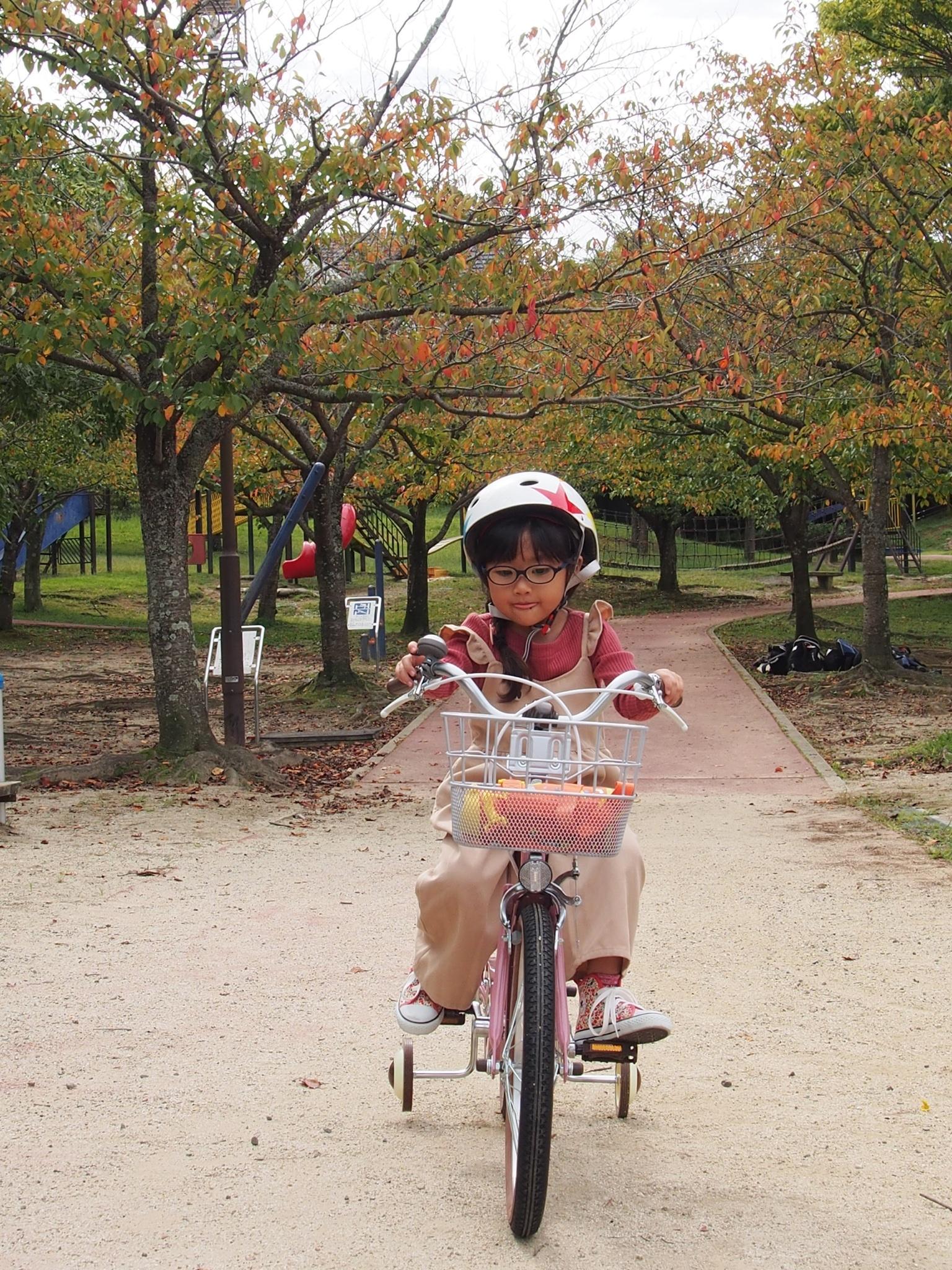自転車 18 インチ 身長