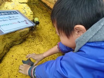 雨の日でも楽しめる水族館では、触れ合いまくれ!?