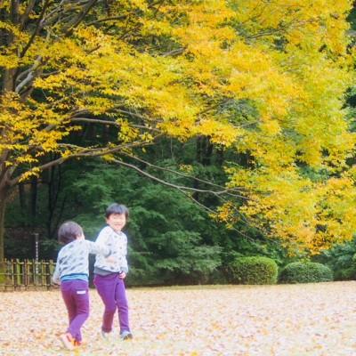 埼玉 森林公園と秋の色