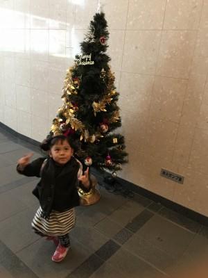 またまたクリスマスツリーめぐり((*´エ`))ノ