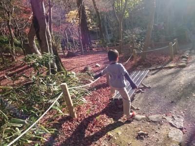 秋の有馬温泉、割引チケットと食べ歩きで満喫
