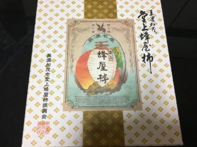【 高級干し柿】 雅 8個入り10,000円 美濃加茂市堂上蜂屋柿