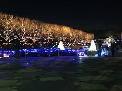 昭和記念公園イルミ★
