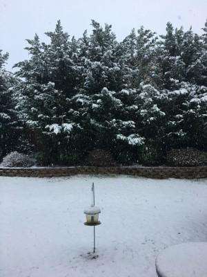 関東全域で雪ですか!こちらも雪でした~!\(^▽^)/