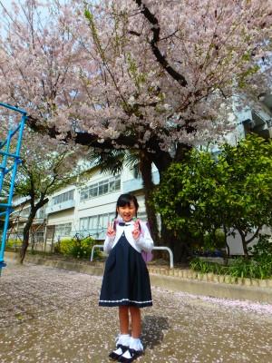 【入学準備】幼稚園とはここが違う!!重要なことはメールで配信??