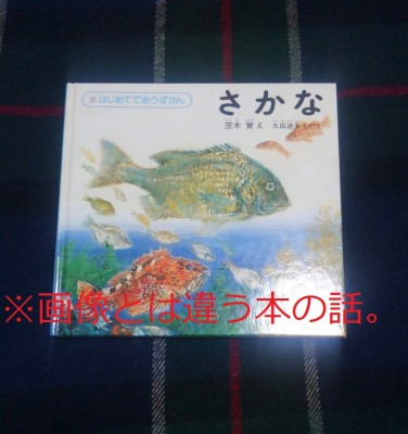 【ママ友怖い?】森に眠る魚 角田光代著を読んで【お受験】