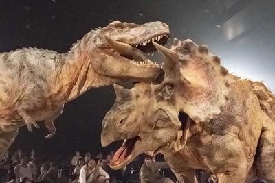 ゴールデンウィーク、渋谷で恐竜に会える!