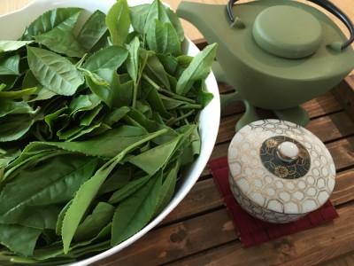 ✨茶摘み体験*お茶作り✨ 新鮮な摘みたて茶葉でいただきます♡