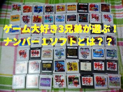 【3DS】ゲーム大好き3兄弟が選ぶナンバーワンソフト!DSグッズも!