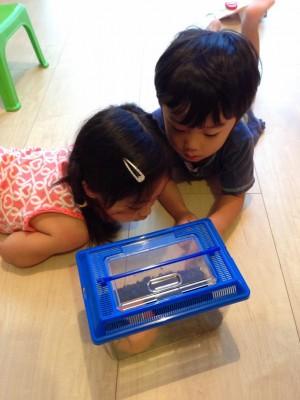 2歳で辛さが面白さに!双子育児のリアルとママの工夫とは